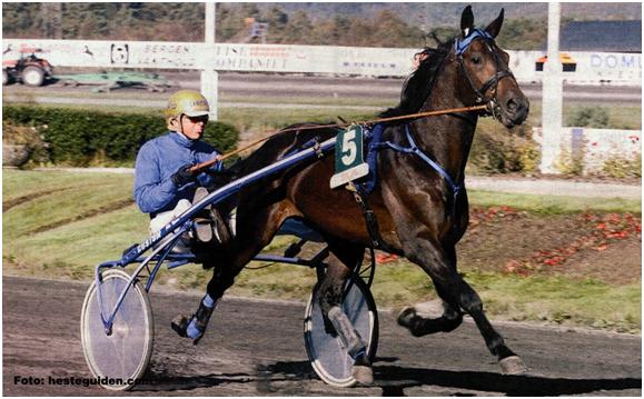 Travhesten Alv Alvson, seiersmaskinen fra 2001 og 2002