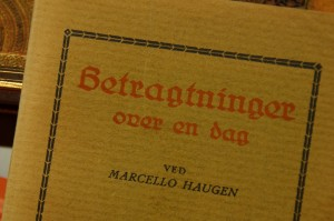 Betragtninger over en dag av Marcello Haugen